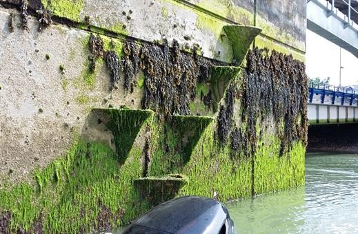 Fishbourne Vertipools Array