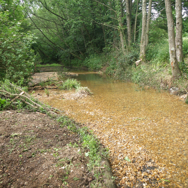 Monks Brook Improvements