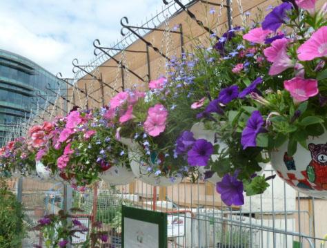 Construction Site Garden