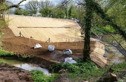 Pinkwood Embankment Replanting