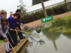 Learning Wetland Area