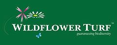 Wildflower Turf.jpg