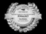 Silver Falchion Emblem Hi-Res.png