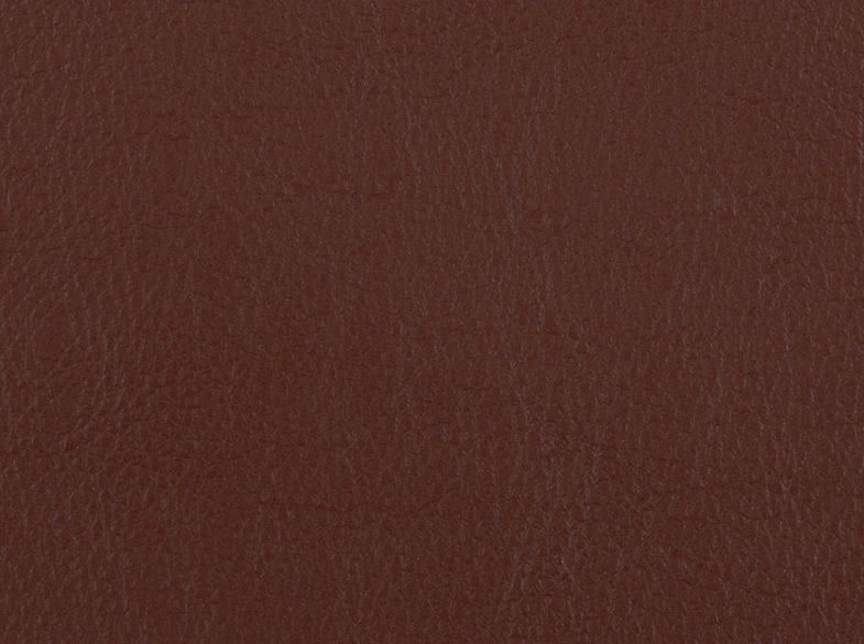 Cinnamon / 5506