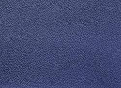 Ocean blue / 33413