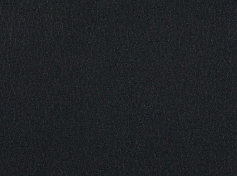 Schwarz / 26100
