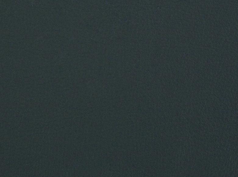 Iona / 5521
