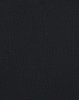 Schwarz 26100.png