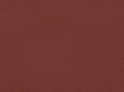 Terracotta / 5505