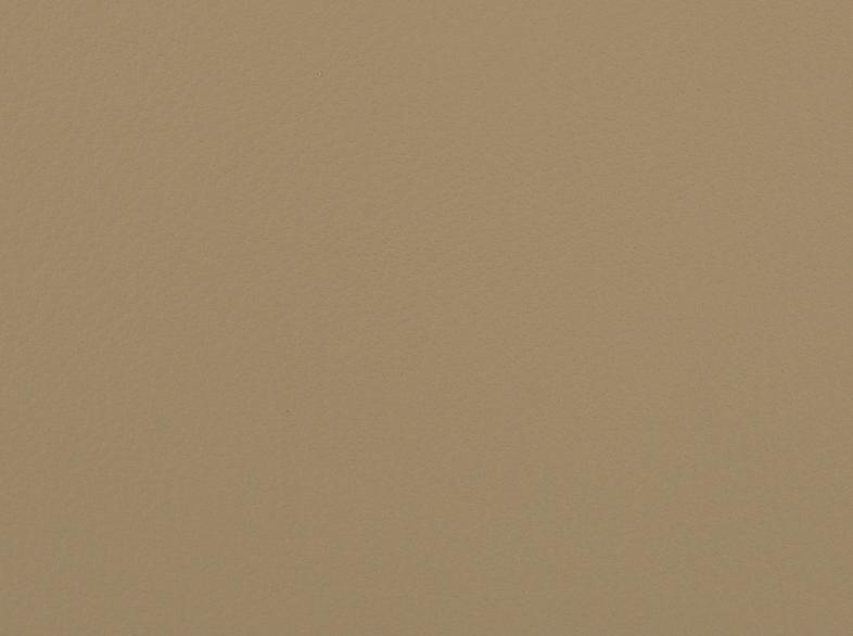 Parchment / 5501