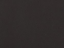 Dunkelbraun / 5509