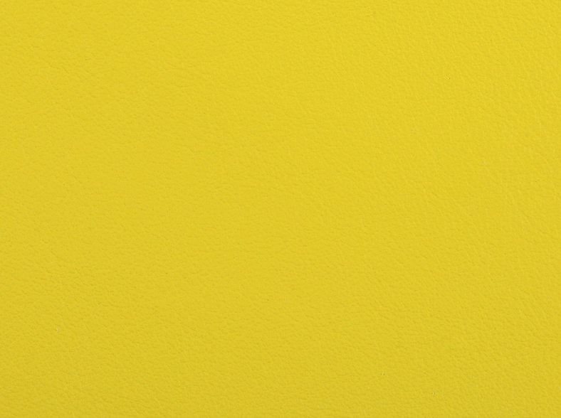 Lemon / 26102