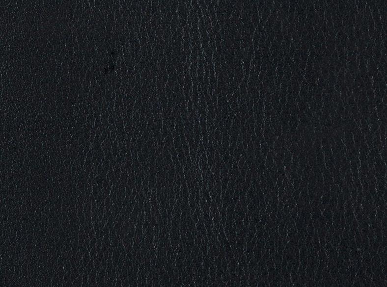 Schwarz / 23100