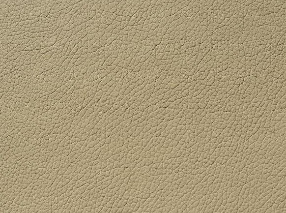 Sahara / 33421