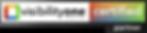 visibilityone partner logo.png