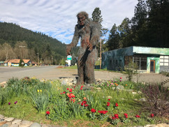 Bigfoot and Davis Rd Town View.jpg