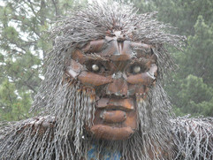 Bigfoots face in the rain.jpg