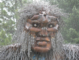 Bigfoots face in the rain.jpg