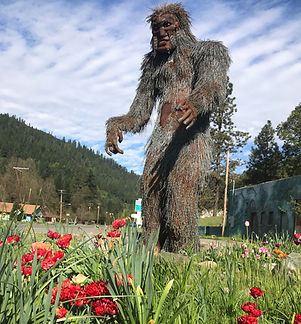 Bigfoot with red tulips 2 (2).jpg