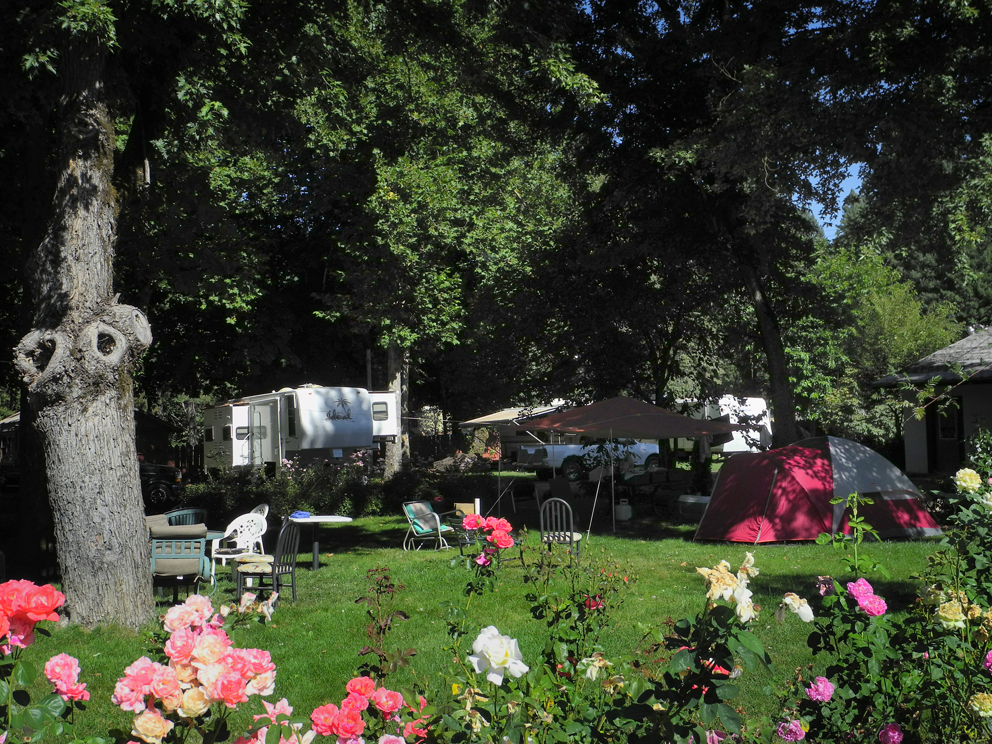 RV #3 Tent