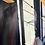 Thumbnail: Window Glimpses