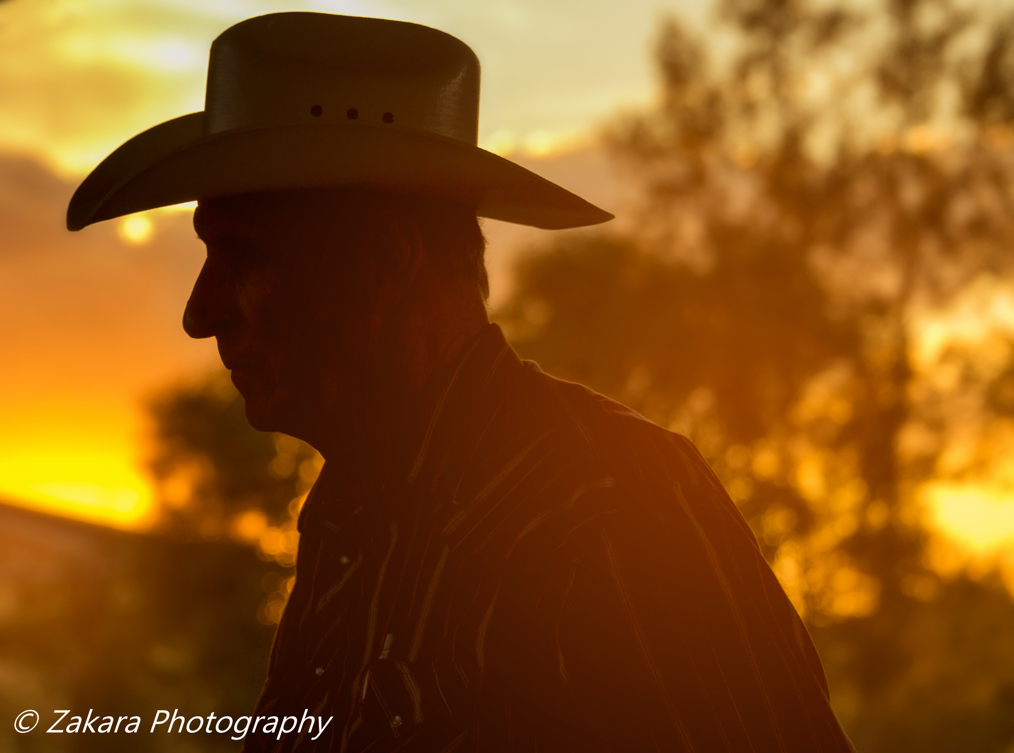 Cowboy Portrait Photographer