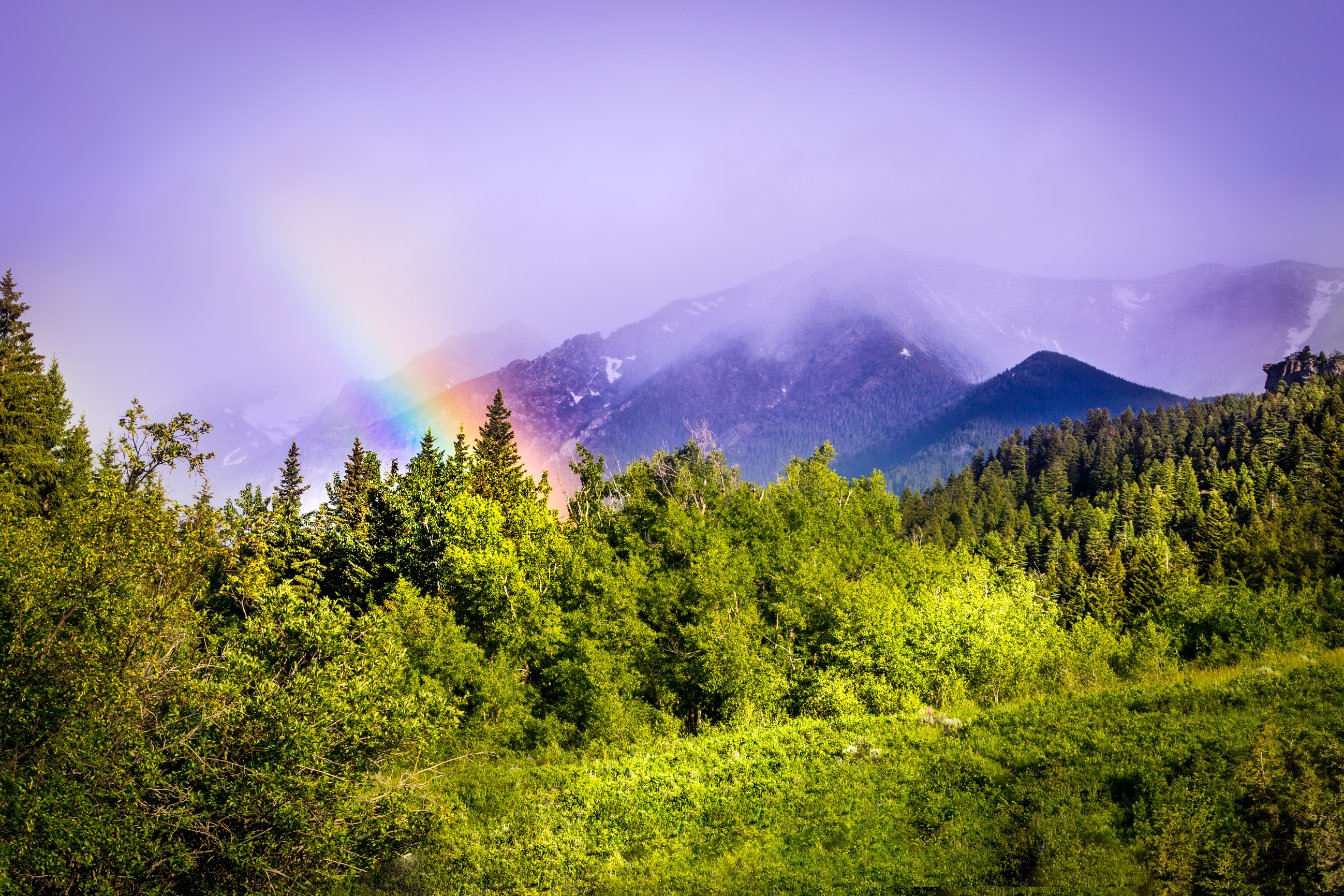 Rainbow viewed from Fisher Cabin