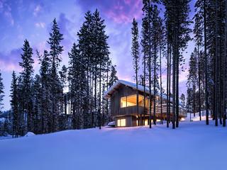 Mountain Ski-in/Ski-out Cabin