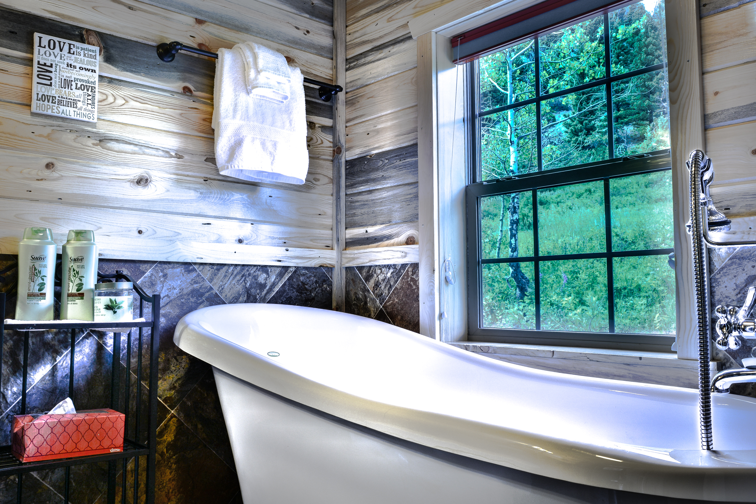 Clawfoot Tub with Mountain Views
