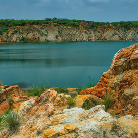 Bhardwaj Lake. Asola Bhatti. Delhi.jpg