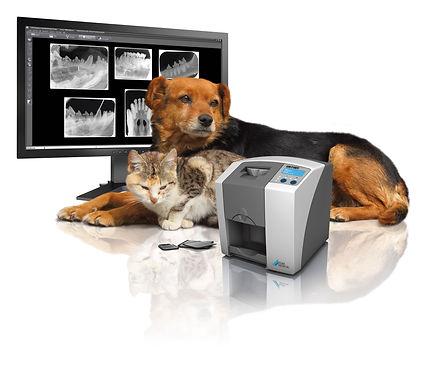 IM-3 Dental Suite & Dental Radiology