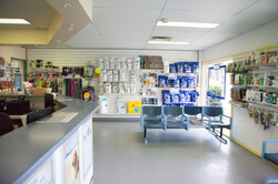 Albion Park & Gerringong Vet Clinic (3 of 164)