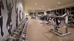 Viceroy-Miami-condos-hotel-residences-gym
