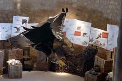 SERVAC_GESTIÓN Casa del Águila