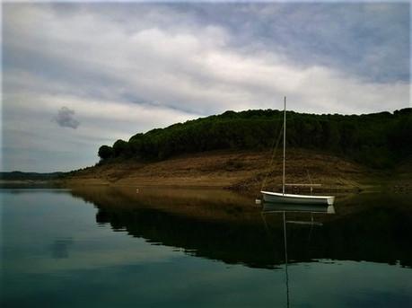 0062_Panthalassa - Sail_Into_Nature.jpg