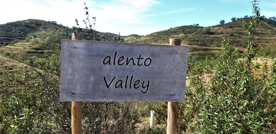 0036_Valley_Sign.jpg
