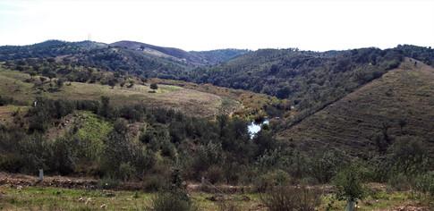 0038_Valley_View.jpg