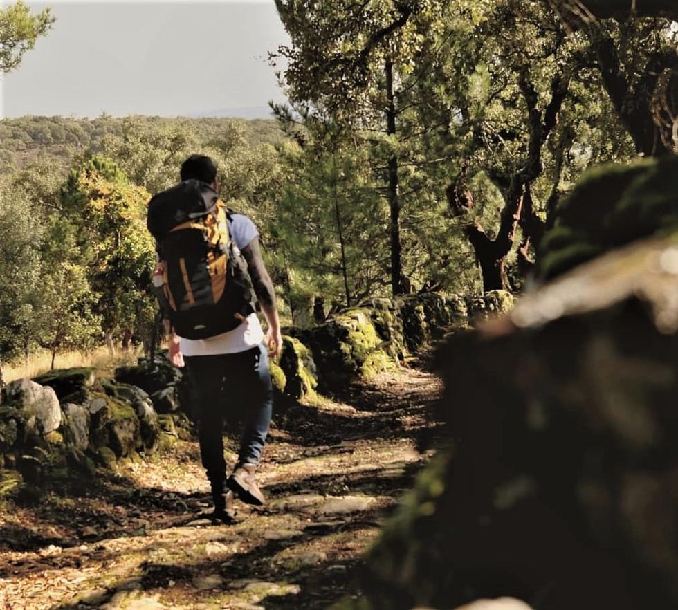 0050_Walking_Trails.jpg