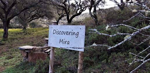 0022_Mira_Sign.jpg