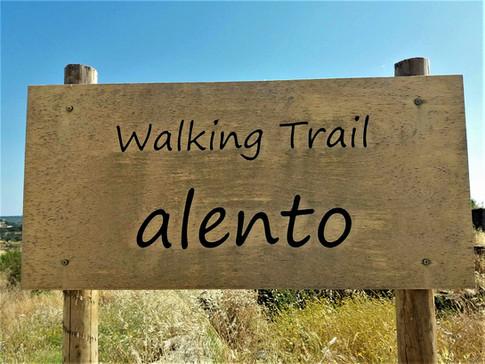 0002_Walking_Trail.jpeg