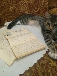 Roxy Reading Letters