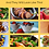 Thumbnail: Metabolic meals quick book guide for easy fat loss