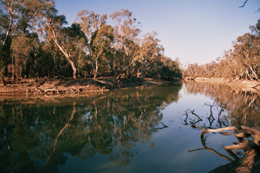 Murray_river_island