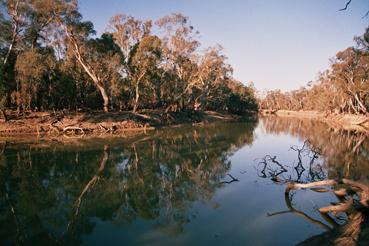 Murray_river_island