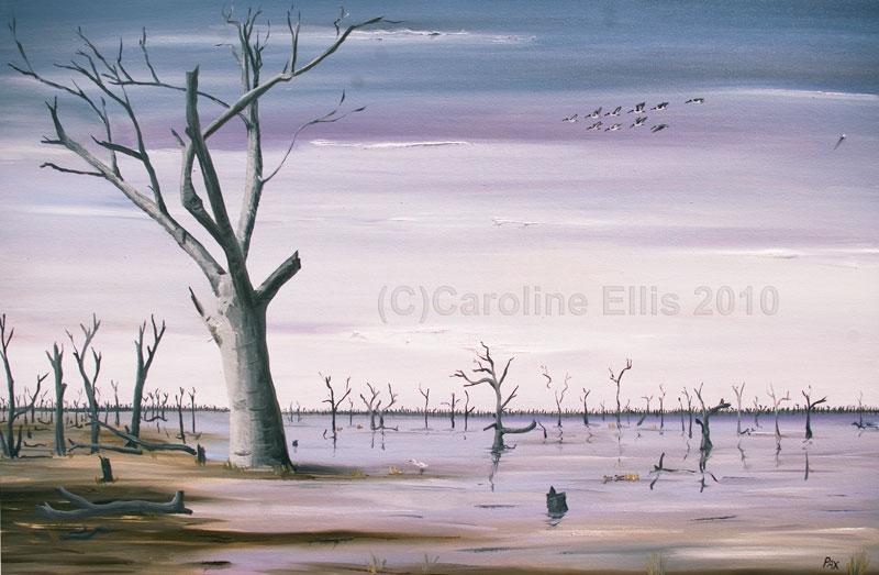 Marshes big tree