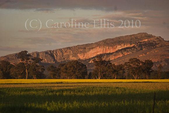 Mt. Sterling: Grampians National Park Australia