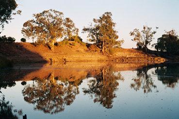 Murray River: Hatta National Park Australia