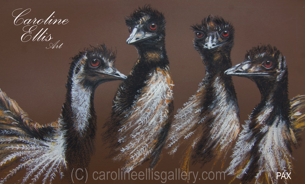 Juvenile Emus