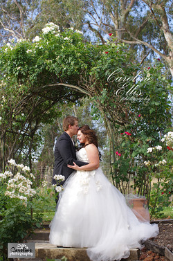 Swan Hill Wedding Photographers