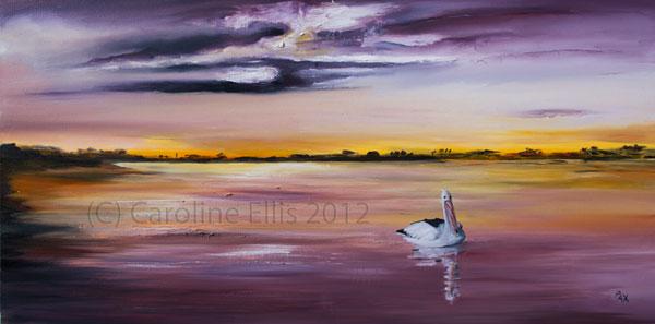 Bowen River Pelican